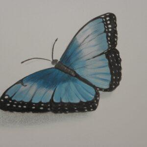 Muurschildering van een vlinder voor in de babykamer