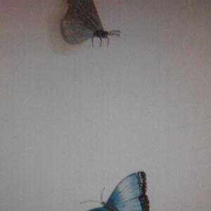 Muurschildering van vlinders eventueel voor in de babykamer