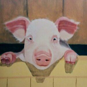 Muurschilderingen varken achter een houten hek op een boerderij