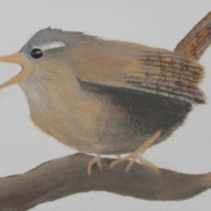 muurschildering babykamer vogeltje