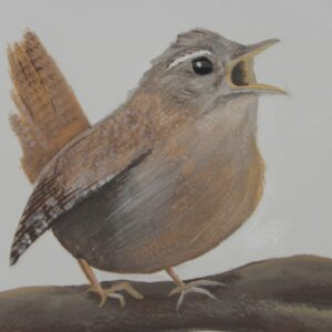 muurschildering vogeltje op tak